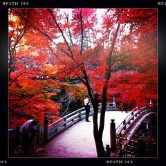 At Higashi Park