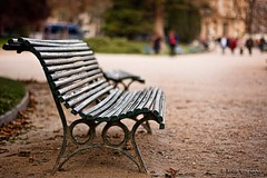 un banc (helen sotiriadis) Tags: park wood paris france canon bench champselysees dof bokeh depthoffield banc canonef50mmf14usm canoneos40d updatecollection