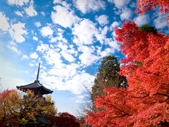 red invasion (Sinnyo-dou temple, Kyoto) (Marser) Tags: sky cloud japan temple kyoto raw autumnleaves   lightroom grd  grd3 grdigital3