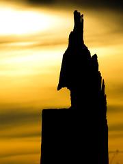 Cavalo (guilherme@lbuquerque) Tags: sky horse tree canon gold natureza chess cu dourado nuvens tronco rvore cavalo cluds silhueta xadrez amaznia rondnia arrancado canonsx20