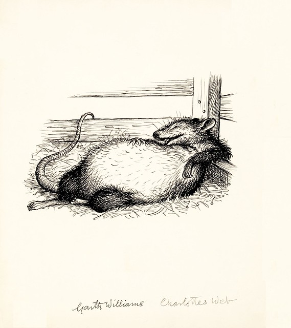 children's book prelim sketch: fat fed rat lying happily on back