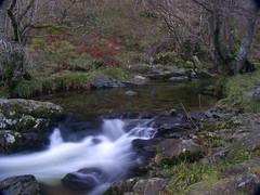 Aira Beck IX (Dr Nigel) Tags: england water lumix stream beck lakedistrict panasonic cumbria polariser nd8 nd4 airabeck dmcfz8