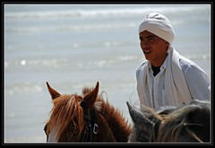 Concentration (Ulla Jensen Photography) Tags: show summer horses beach northafrica tunisia djerba performance culture