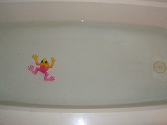 frog in tub (2)