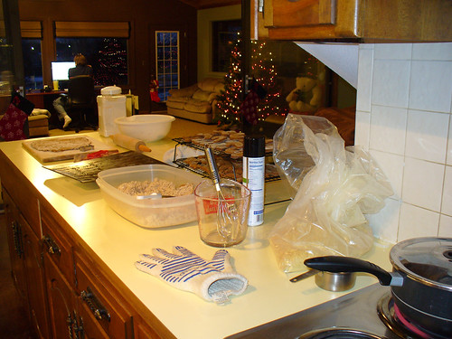 2010-12-13 - Kitchen - 0002