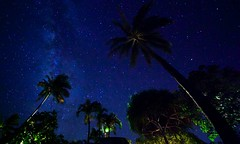 Night 113- Pandora (Karim Iliya Photography) Tags: ocean sky cloud green beach night way stars star hawaii haiku maui palm galaxy hi milky