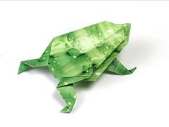 Origami création - Didier Boursin - Grenouille