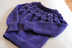 Gracelet (sixOthree) Tags: wool up vintage sweater eyes knitting toddler acrylic child purple kate bottom knit cable merino cables button childrens knitted delphinium weight nylon worsted davies owls yoke cabled owlet ribbing berroco