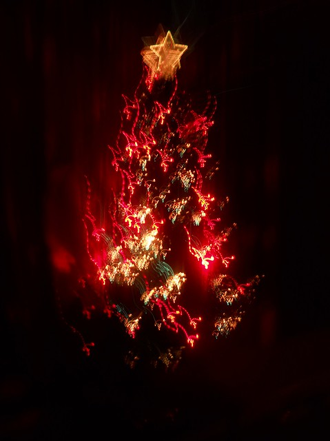 Bad photo of tree