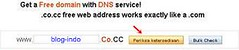 CO.CC:Free Domain