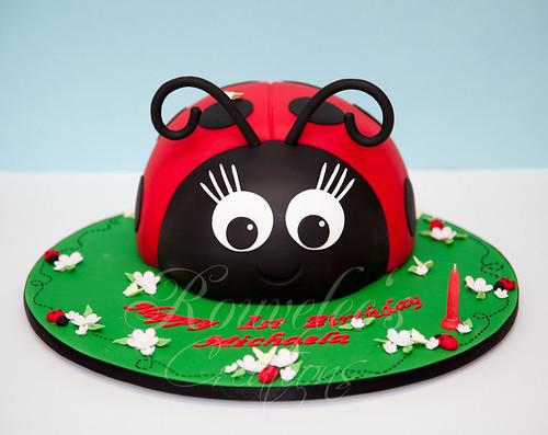 Michaela's Ladybug