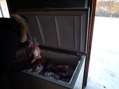 settlers freezer