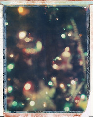 (jeffreywithtwof's) Tags: old tree film jeff analog polaroid lights bokeh ornaments instant years 12 chirstmas hutton expired happyholidays merrychristmas packfilm 998 iduv jeffhutton konicainstantpress jeffhuttonphotography thereareonly8shotsinoldpackpackfilm jeffreyhutton