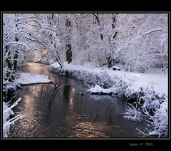 A Little Brook In Winter. (Picture post.) Tags: trees winter snow green ice nature water reflections river landscape interestingness brook paysage arbre soe winterlight christmascard platinumheartaward flickraward coldpicture mygearandmepremium yahoo:yourpictures=elements yahoo:yourpictures=landscape