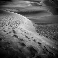 Dunas de Maspalomas ((D.M.C)) Tags: grancanaria sand arena dunas maspalomas