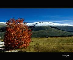 Autunno-Inverno (Gizzy28) Tags: inverno autunno abruzzo roccaraso bestcapturesaoi mygearandmepremium mygearandmebronze mygearandmesilver mygearandmegold artistoftheyearlevel3 artistoftheyearlevel4 gizzy28