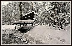 all snow (Hobbyfotograf Jrgen Marz) Tags: schnee snow bench bank nrw duisburg ruhrgebiet pott niederrhein ruhrpott