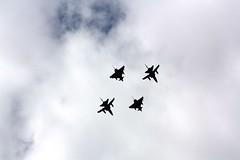 IMG_0067 (Simes63) Tags: dragon chipmunk tigermoth tornado blades redarrows nimrod rapide vc10 sptifire