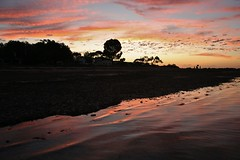 Fishermans Bay (robynbrody) Tags: ocean sunset sea sky reflection beach nature water clouds reflections geotagged evening twilight fishing fisherman waves dusk australia fishermans southaustralia shantytown shacks portbroughton fishermansbay yorkepeninsular fishermanshuts spencergulf landscapescoast