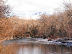 Winter On The Boise River (S. Fielding) Tags: