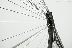 51/52 (Pawel Trybulski) Tags: bridge sky white lines grey most warsaw warszawa sup liny d40 witokrzyski 525of2010
