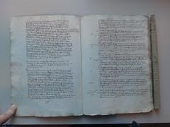 0847-0242-11 (Duul58) Tags: oisterwijk protocol 1537 schepenbank