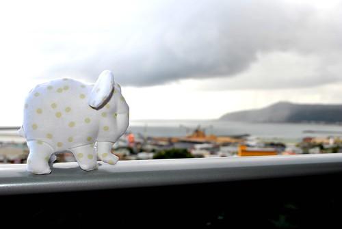 Olga the Elephant 2