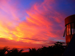 A Brazilian Christmas Day sunrise to remember (peggyhr) Tags: ocean pink blue windows friends brazil sky orange yellow clouds sunrise reflections hotel waves niceshot silhouettes fuschia loveit pa harmony showroom mauve atlanticocean soe breathtaking goldenhour crepuscolo christmasmorning finegold 50faves cloudsandskies coconutpalmtrees peggyhr flickrbronzeaward sunbestsunphotos platinumheartawards everydayissunday flickridol photosthatrock gaveyachills cherryontopphotography peaceawards thebestshot ddsnet beautifulshot 100commentgroup grouptripod doubledragonawards photographerparadise artofimages tophonorofphotographerparadise crepuscolosunsetssunrisesnights flickraward worldwidetravelogue ~contactgroup~ infiniteholidayclick naturesprime postthebest bestpeopleschoice heartworldaward mygearandme1 cloudsandanythingelsehomeoftheclouds ringexcellence naturespotofgoldlevel1 flickrtravelaward chariotsofartists shieldofexcellencelevel2 level1photographyforrecreation freeadminworld qualifiedmembersonlylevel1 december252010 blinkagainforinterestingimages tiledsurface p1180938a