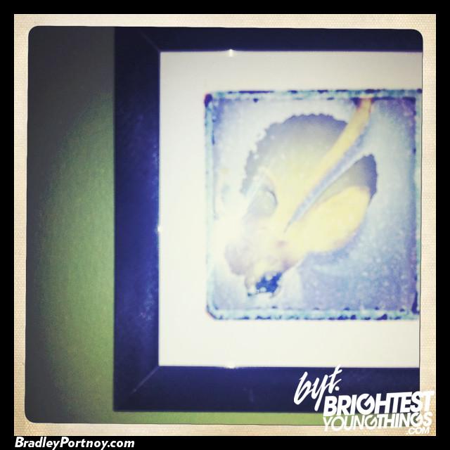 Polaroid Retrospective-37