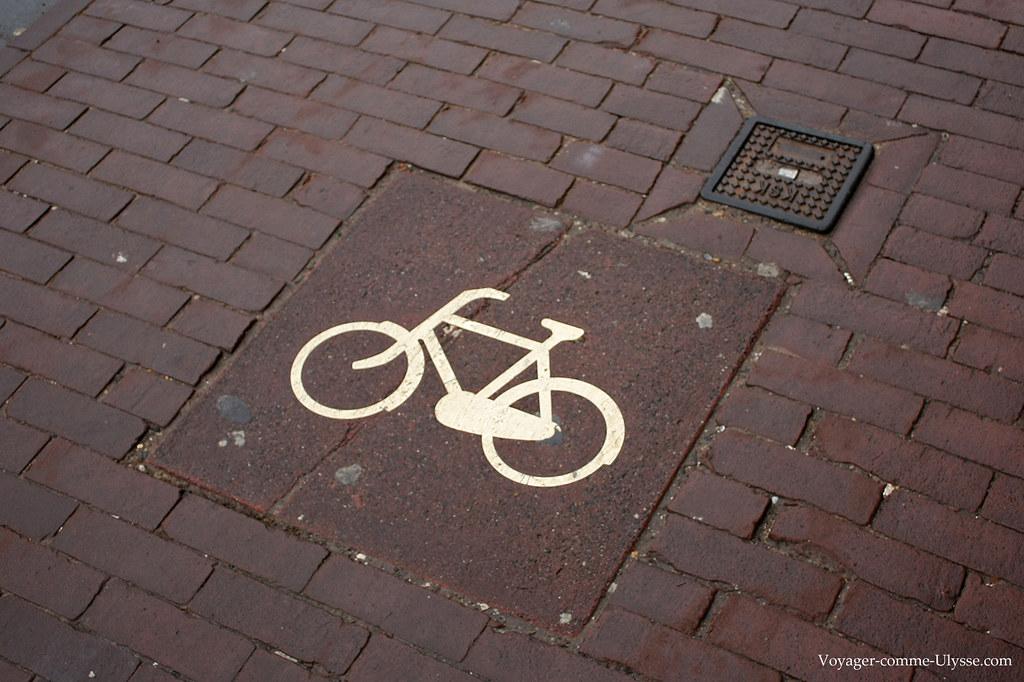 Indication au sol de piste cyclable