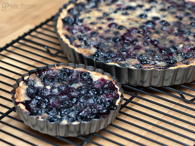 Blueberry Tarts Cooling