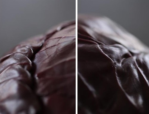 diptych red cabbage rodekool