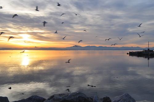 TRR: Garry Point Beautiful Water