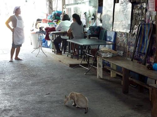 Bangkok 2011 (6)