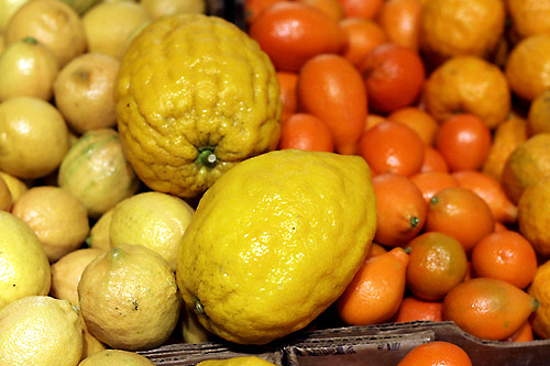 citrons, mandarinquats, lemons