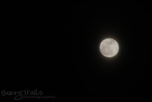 19 - full moon