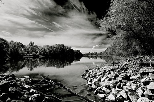 river landscape #3 (91623011@N07), photography tags:  wood trees blackandwhite sun cold reflection water clouds river germany shadows stones treetrunk shore olympusm918mmf4056
