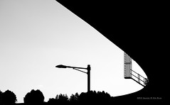 curved (gwnam.2008) Tags: nature urbannature naturalpattern autumn august nopeople road overpass flyover infrastructure urban urbanscape urbanscenery construction bw monochrome white black blackwhite lamp light tree 2015 seoul korea southkorea