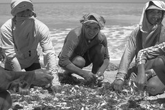 IMG_6593 (Santiago Velsquez) Tags: guajira colombia wayuu camarones fishermen pescadores pescador fisherman fish pescado playa beach