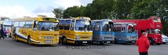 Stantons of Stoke line-up, P1050318 (LesD's pics) Tags: bus coach showbus2016 stevensons stevenson spath bassetts stevensonspath stantonsofstoke