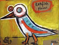 Matt Sesow - Kenfish plovet