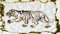 TIGRE (Black Crown . tribal) Tags: white black art design designer tiger tribal tatoo ilustration tigre