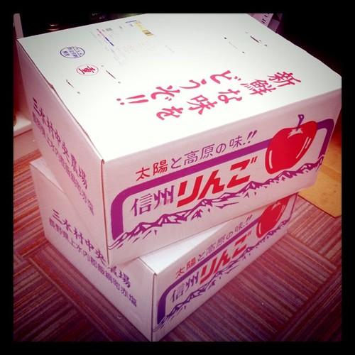 長野の実家から、信州りんごがもう一箱