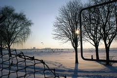 Tempelhofer Feld (onnola) Tags: schnee winter sun snow tree berlin fence germany deutschland airport wire mesh zaun sonne baum neukölln flughafentempelhof flugfeld tempelhoferfeld tempelhoferpark