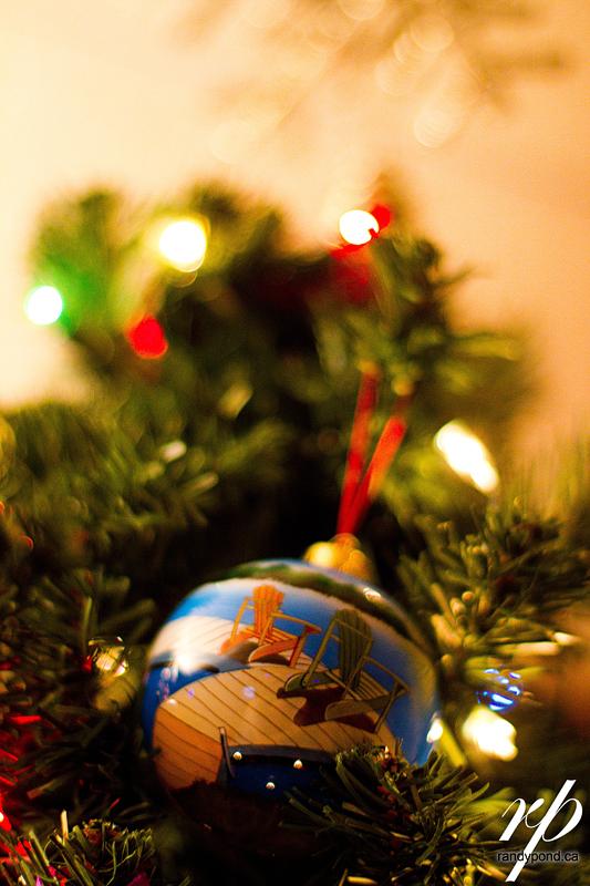 ~ 339/365 Christmas 2010 ~