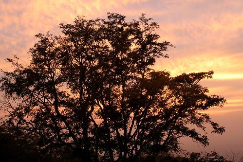 Mysore 033