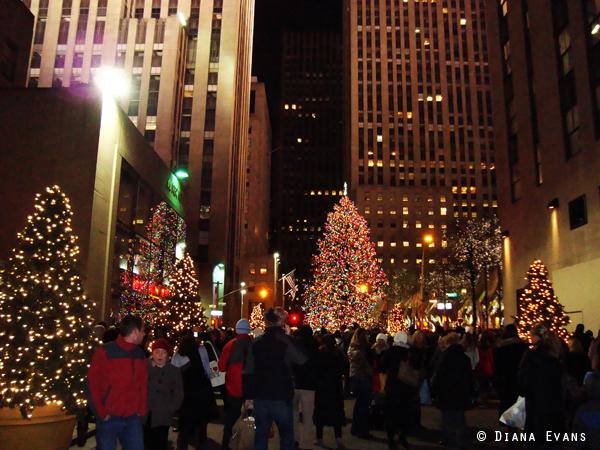 December 5th 2010 354