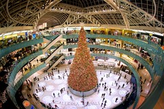 The Galleria - Dallas, TX (Matt Pasant) Tags: christmas shopping icerink fisheye galleria