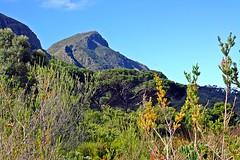 Berge in Africa
