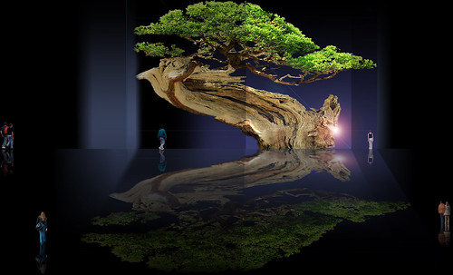 """Bonsai000 • <a style=""""font-size:0.8em;"""" href=""""http://www.flickr.com/photos/30735181@N00/5261348771/"""" target=""""_blank"""">View on Flickr</a>"""